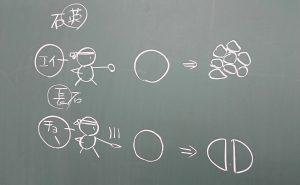 授業の小ネタ-理科-
